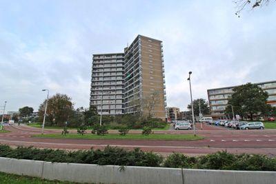 Zeewijkplein, IJmuiden