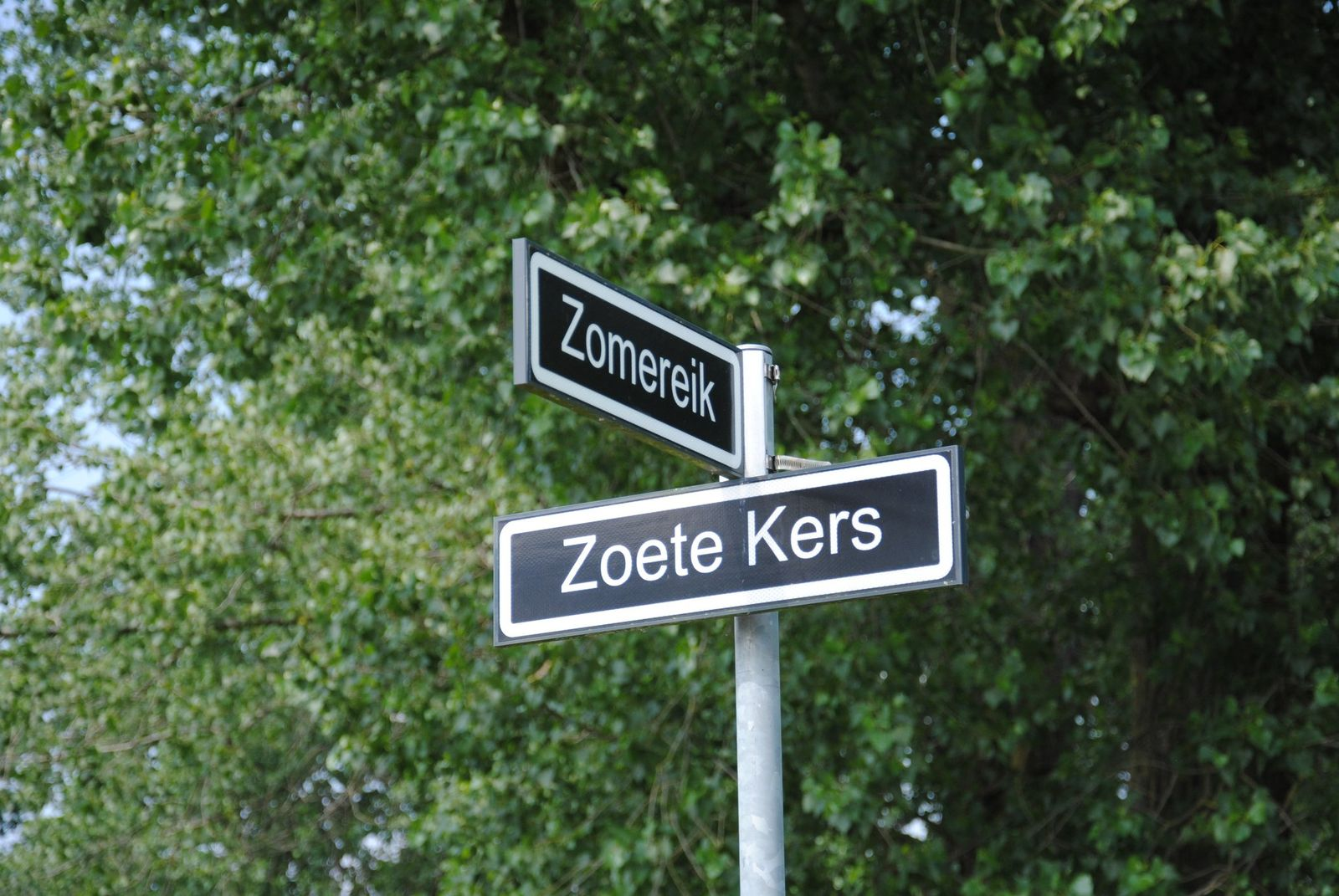 Zoete Kers 0-ong, Helmond