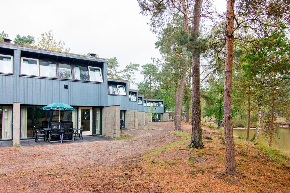 Vennenbos 805, Hapert