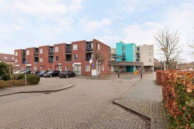 Fluitekruid 20, Den Hoorn