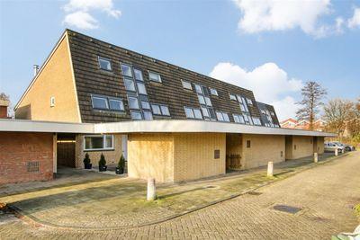 Strandschelpenbank 1, Leiden