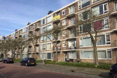 Jan van Zutphenstraat, Schiedam