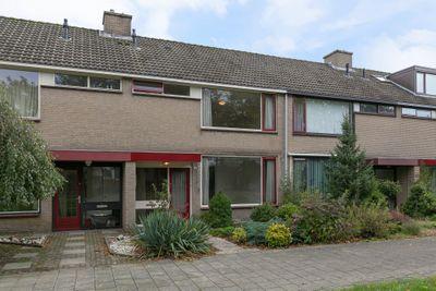 Sterrebos 4, Breda
