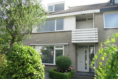 Elswout, Eindhoven