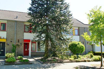 Van Hogendorpstraat 44, Rijen