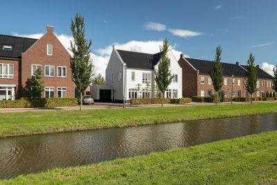 Wadloper 11, Kampen