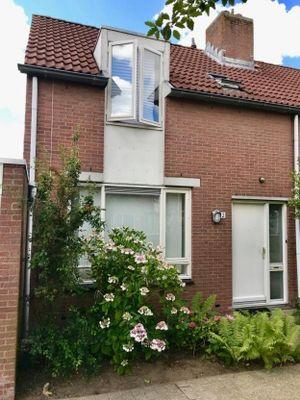 Groef 12, Hoorn