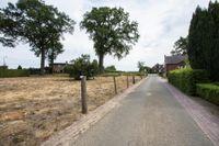 Borgsweg 0, Posterholt