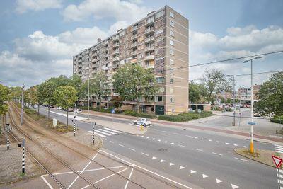Molenvliet 150, Rotterdam