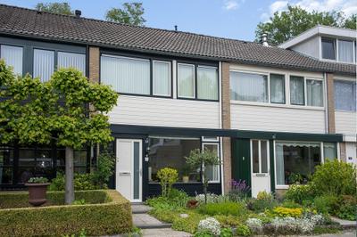 Petuniastraat, Enschede