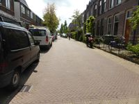 Tulpstraat, Hilversum