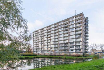 Antwerpenstraat 488, Breda