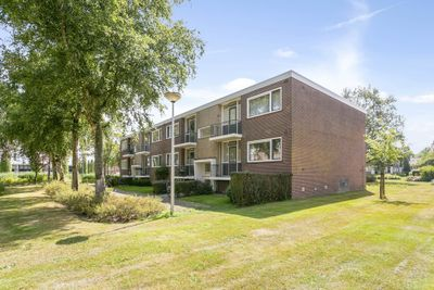 Helperzoom 291, Groningen