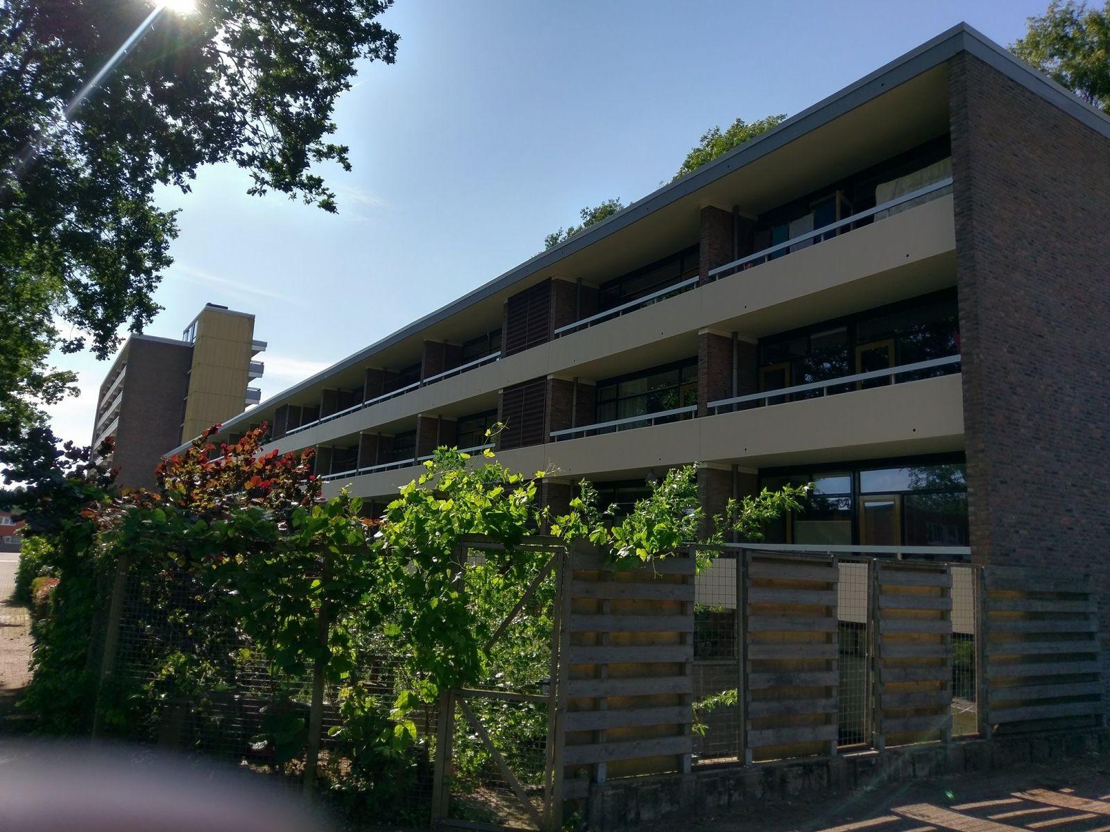 Landschaplaan 177, Emmen
