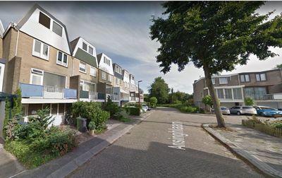 Ansinghlaan, Nieuwegein