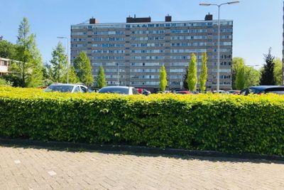 Valeriusplein, Alphen aan den Rijn