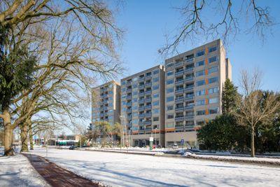 Laan van Borgele 40-401, Deventer
