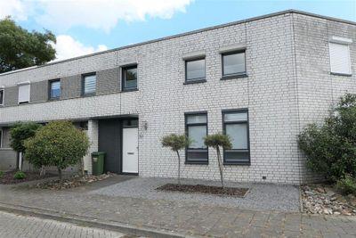 Plantagobeemd, Maastricht