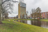 Wielewaalplein 232, Groningen