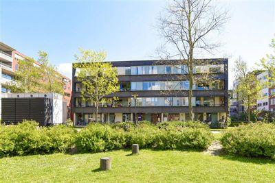 Taman Sapituin 23, Amsterdam