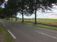 Dikbosstraat 3032, Emmen