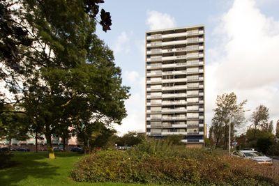 Waddenstraat 395, Haarlem