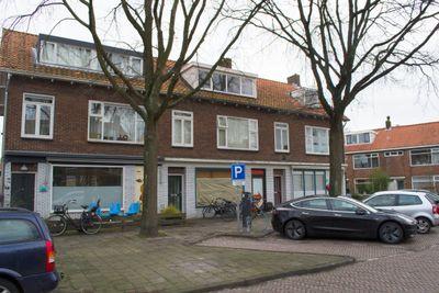 Roomburgerlaan, Leiden