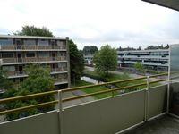 Van Borselenstraat, Arnhem