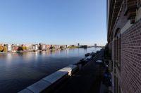 Purperhoedenveem, Amsterdam