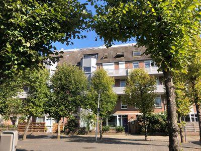 Roserije 206E, Maastricht