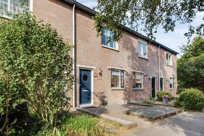 Chathams 36, Utrecht