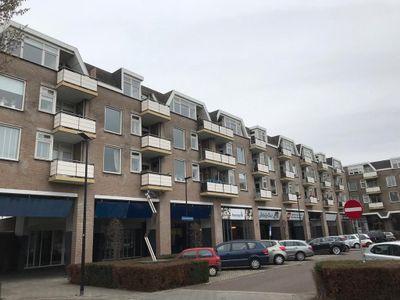Kervel, Oisterwijk