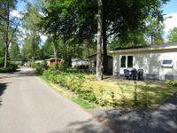 Koningsweg 14F1, Arnhem