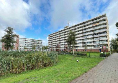 Peppelhorst 49, Waddinxveen