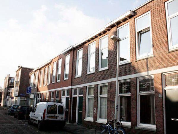Frederik Ruyschstraat, Den Haag