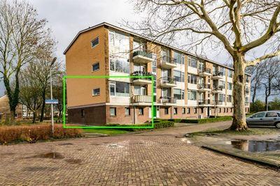 Anemoonstraat, Hoogeveen