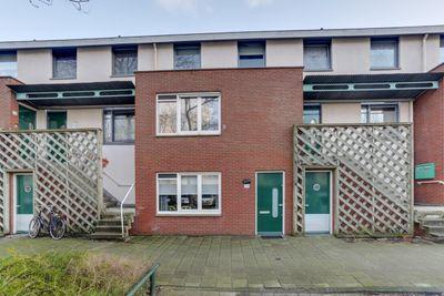 Bruinvisstraat 58, Amsterdam