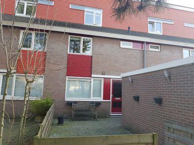 Waterman 158, Hoorn