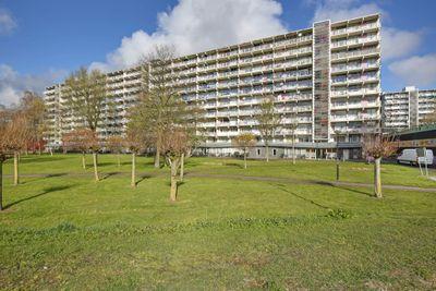 Hogevecht 8, Amsterdam