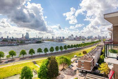 Buizenwerf 253, Rotterdam