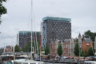 Het Hout, Groningen