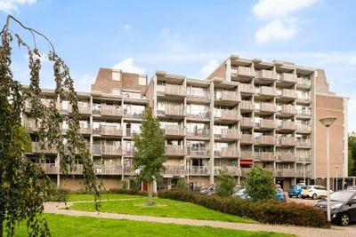 Nieuwveld, Nieuwveld 124, 5702HW, Helmond, Noord-Brabant