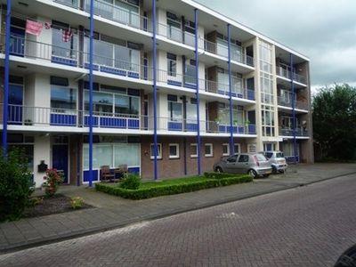 De Reiger 237, Hoogeveen