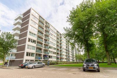 Ierlandstraat 142, Haarlem