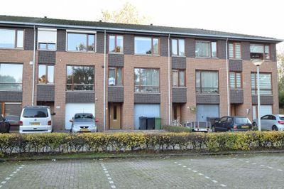 Moerbei, Bergen op Zoom