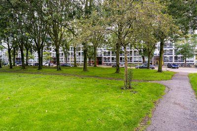 Dommeringdreef 39, Utrecht