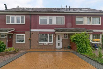 Wittenstein 238, Dordrecht
