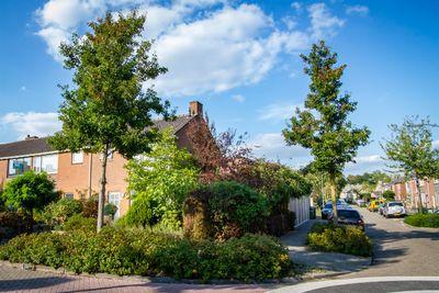 Azaleastraat 23, Oosterhout