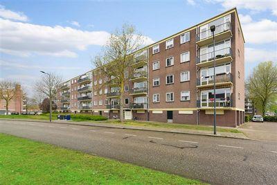 Maassingel 224, 's-Hertogenbosch