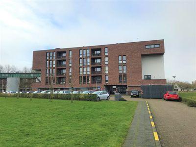 Ter Vestelaan, Middelburg